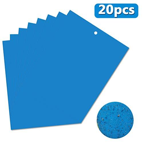 OMZGXGOD 20 Pcs Trampas de Insectos de Doble Cara, Papeles Pegajosos Azul Trampas de Moscas, para Moscas, pulgones, mineros de Hojas, polillas