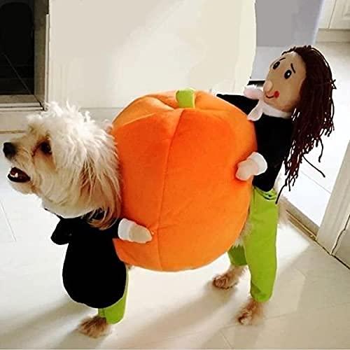 Halloween Dog Costumes Pumpkin,Funny Pet Dog Cat Clothes - Carrying Pumpkin Costume Fancy Puppy...