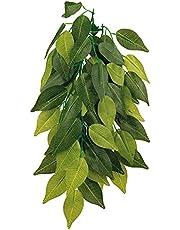 Planta seda colgante terrarios Ficus TRIXIE Decoracion terrario habitat reptil