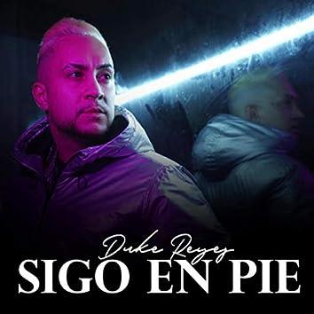 Sigo en Pie