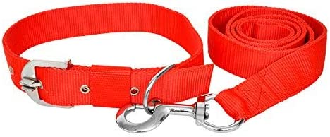 VIP COLLECTION Premium Strong Nylon Everyday Dog Collar Leash Set Color - Red Medium