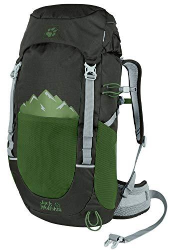 Jack Wolfskin Kinder Pioneer 22 Pack Rucksack, Antique Green, ONE Size