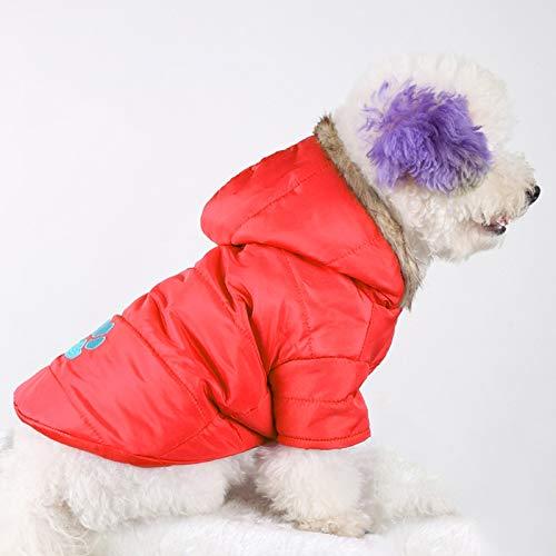Fgsdi9wer huisdier hondenwinterjas hondenjas Cat Sweate The Art en wijze winterart huisdier geborduurde honden verdikt warm katoenen jurk Maat: S/M, borstomvang: 46-51cm, hals: 31-35c, rood