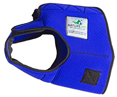 NATURE PET Hygienehose für Hündinnen / Inkontinenzhose für Hunde / Hundewindeln / Hundewindeln (XL, blau)