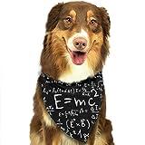 Jxrodekz Ecuación matemática3 Pañuelos Pañuelos Bufandas Bufandas Triángulo Baberos Accesorios para Perros pequeños a Grandes