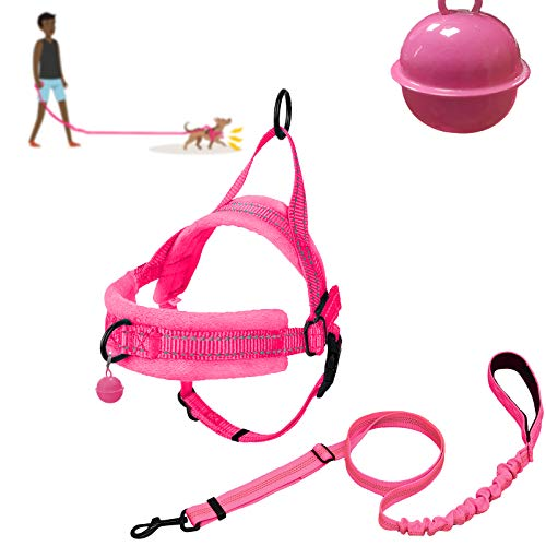 XIRGS Walking Dog Harness and Leash Set, Soft Flannel Padded Dog Halter & Lead No Pull Puppy Vest Adjustable Pet Training Harness Quick Fit Easy for Walking Running Training Small Dog (XXS, Pink)