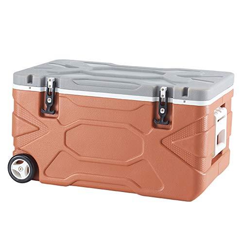 Aida Bz Kühlbox 55 l fahrbarer Auto-Kühlschrank, wärmere und kühlere 2 Modi, Reisen, Camping (Kaffeefarbe)