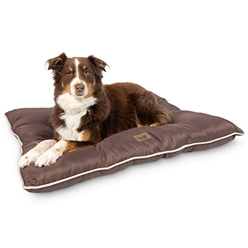 Pet Craft Supply Super Snoozer Calming Indoor / Outdoor All Season Water Resistant Durable Dog Bed, Large, Chocolate