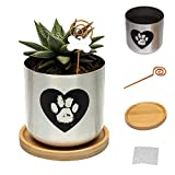 Capti Dog Memorial Gift Plant Pot - Paw Prints On My Heart Planter Pet Loss Gifts - Cute Pawprint, Rainbow Bridge Poem & Stake Ornament Remembrance Bereavement Keepsake - Plant Not Included
