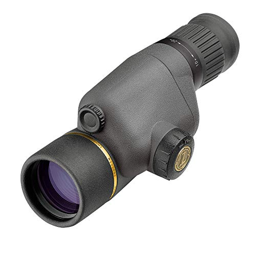 Leupold GR 10-20x40mm Gold Ring Compact Spotting Scope, Shadow Gray
