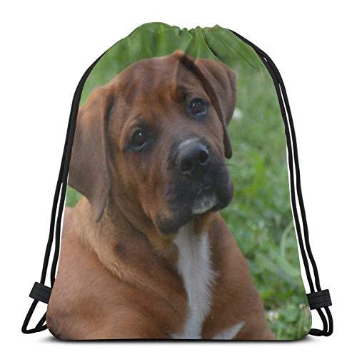 Perro en el sofá mascota perro manchado animal relajado personalizado cordón bolsas de hombro bolsa de gimnasio mochila de viaje ligera gimnasio para hombre mujer 16 x 14 pulgadas