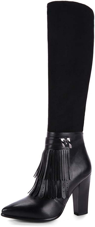 Webb Perkin Women Pointed Toe High Heels shoes Tassel Decoration Elegant Footwear Lady Knee-high Boots