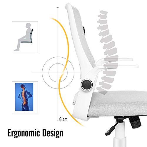 ELECWISH Office Chair Ergonomic Desk