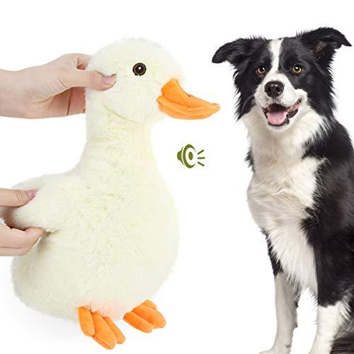 Pawaboo Plüsch Hundespielzeug, Ente Plüschspielzeug Sicher Kauspielzeug Ungiftig Kuscheltier Stuffed Quietschen Interaktives Spielzeug mit Füllung Plüsch Stoff für Hunde Beißen und Training, Orange