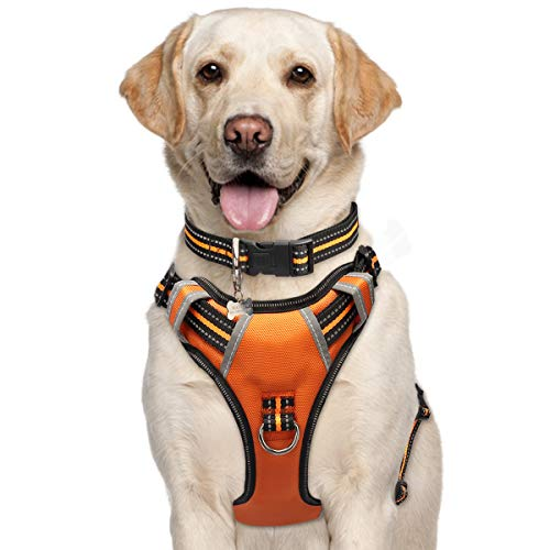 Dog Harness Reflective