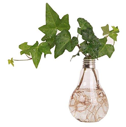Kanggest.Jarron de Bombilla Florero en Forma de Bulbo Jarrón de Vidrio de Planta Flor Decoración de Escritorio Bombilla Transparente jarrón Recipiente en Maceta-Standable