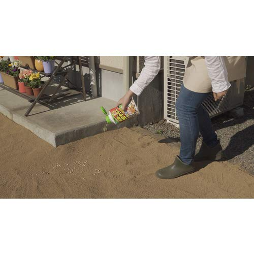 カダン お庭の虫キラー300g [2427]