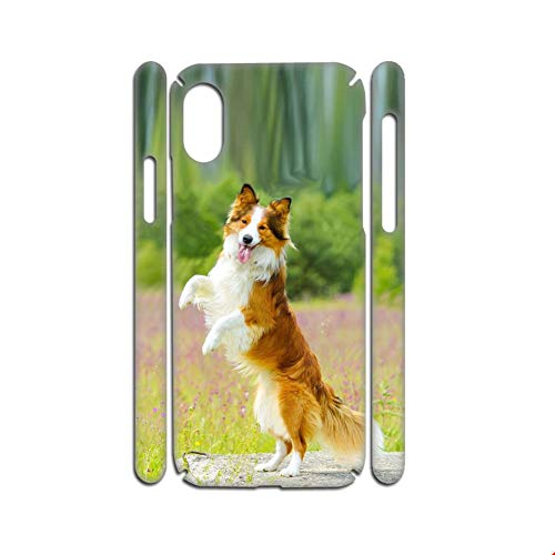 Generic Compatible con Apple iPhone Xr Print Collie Abs Phone Shell para hombre.