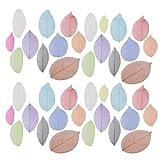 Healifty 40 foglie di scheletro naturali secche foglie fai da te in gomma per albero e foglie, materiali per artigianato, scrapbooking, biglietti, decorazioni per matrimoni, accessori decorativi