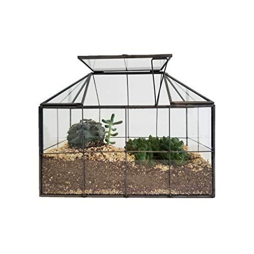Humeng Terrarium Grande Vetro Trasparente di qualità Geometrico e Sunshine House Decorazione Domestica Vaso di Fiori Vaso Artistico per Catus Moss Piante grasse Piante Artigianali