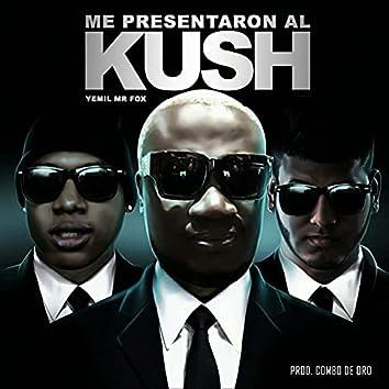 Me Presentaron Al Kush