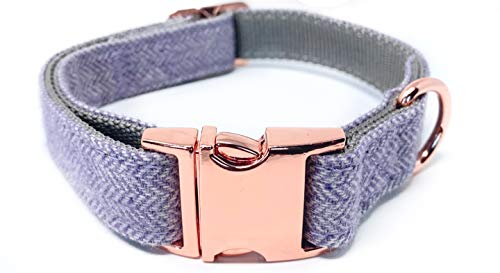 InstaPetTags Rose Gold Collars and Leashes | Lavender Nylon Collars and Leashes w/Rose Gold Buckles (Large Collar)