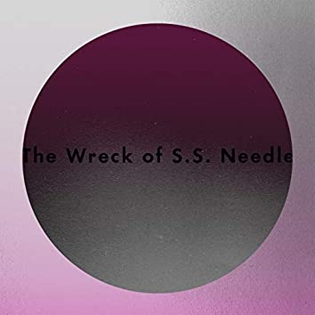 The Wreck of S.S. Needle