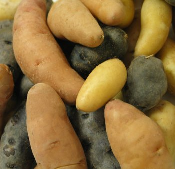 Melissa's Fingerling Potatoes, (3 lb)