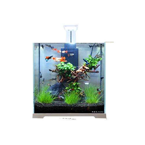 Hjd Aquarien Wohnzimmer Desktop-Aquarium Glas Aquarium Zuchtbecken for Fische Aquarien (Color : A)