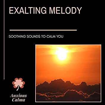 Exalting Melody - Soothing Sounds To Calm You