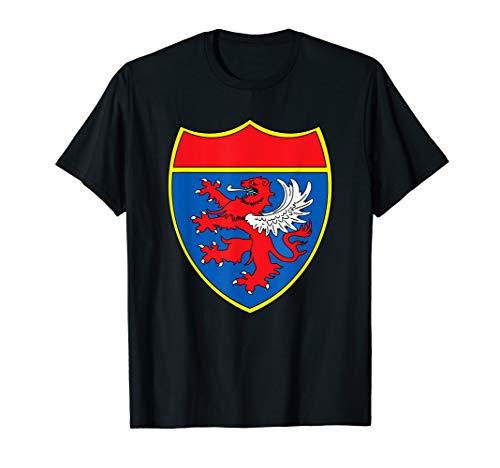Knight Kostüm Shirt Jungen-Ritter-Schild-Rüstung