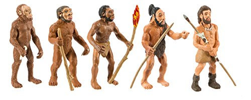 Safari Figuren-Set: Die menschliche Evolution