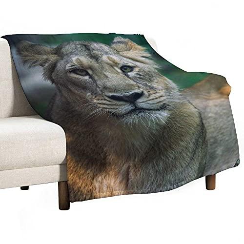 Mantas para Sofa Batamanta Mujer de Franela y Sherpa Manta Bebe Sofa Mantas con Estampados para la Cama y el Sofá 100x130 cm León Animal
