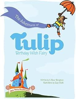 The Adventures of Tulip, Birthday Wish Fairy