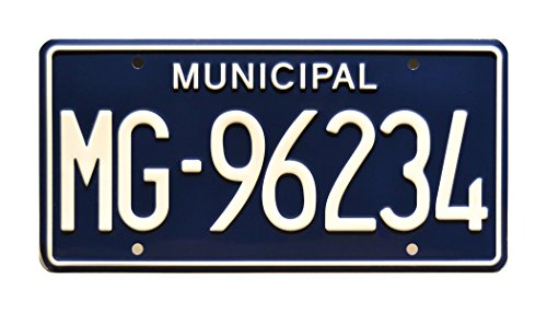 The Walking Dead | MG-96234 | Metal Stamped License Plate