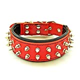 Bestia 'Frenchie Red Genuine Leather Dog Collar. Studded. Soft Padded