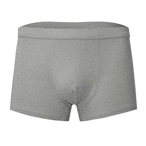 Herren Boxershorts Männer Unterhose 1{877418b0c387b3ccdaac46ac55bcb73c8f9534aab4584769c4f9d252712d08b5} Baumwolle Sommer Bequem Pure Retroshorts Atmungsaktiv Retro Unterwäsche Viele PPangUDing Kurz Shorts Hipster Basic Lace (XL, Grau)