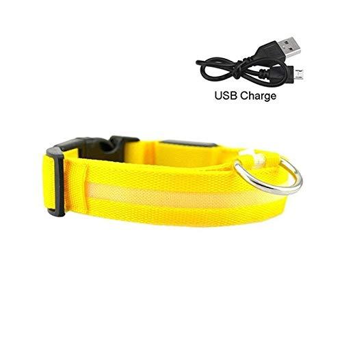 MYYXGS Collar Luminoso para Perros, Cable De Carga Led con Cable De Remolque, Collar Joven De Nylon De Nylon PequeñO, Mediano Y Grande, Seguro para Caminar