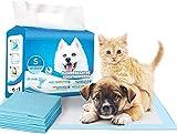 ARCO IRIS MUNDI Empapadores Perros Alfombrilla higiénica de Entrenamiento para Perros, Súper absorbentes, Secado rápido (120Unidades, 60 x 40 cm) (Empapador, 120 Unid.)