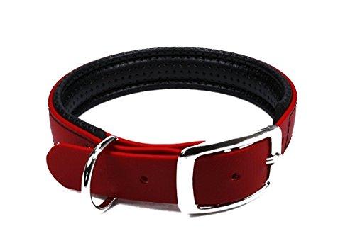 LENNIE BioThane Halsband, gepolstert, Dornschnalle, 25 mm breit, Größe 38-46 cm, Rot, Aufdruck möglich