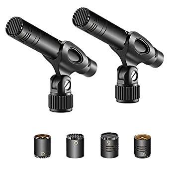 Neewer 2-Pack Pencil Stick Condenser Microphone with Interchangeable Omni Cardioid and Super Cardioid Capsules Foam Windscreens Mic Clip and Portable Carrying Case for Acoustic Woodwind Instruments