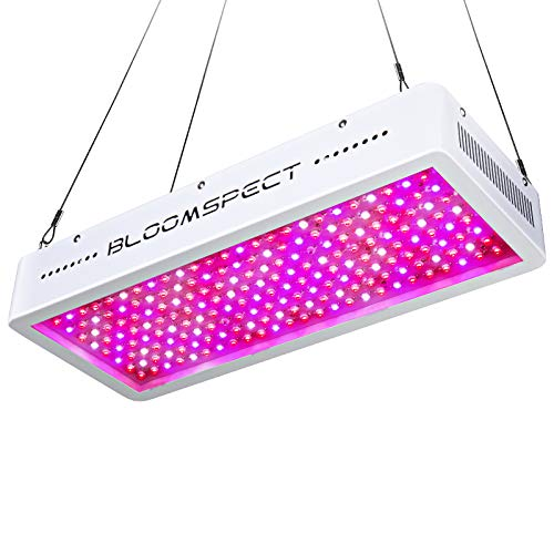 BLOOMSPECT 2000W LED Grow Light, Full Spectrum LED Plant Growing Lamps for Indoor Plants Veg and Flower Hydroponics Greenhouse (200pcs 10 Watt LEDs)