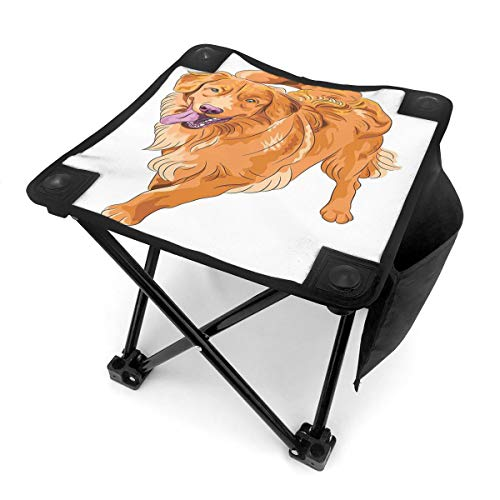 ALLMILL Portable Camping Stool,Playful Dog Running with A Smiling Face Best Friend and Companion,Folding Mini Chair with Carry Bag for Travel Hiking Gardening Picnic Beach BBQ Outdoor Activities
