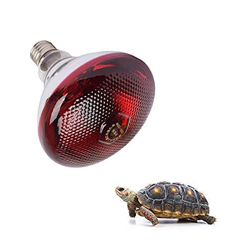 AOOCEEH WäRmelampen FüR Tiere WäRmelampe SchildkröTen WäRmelampe Tiere Uvb Lampe SchildkröTen Lampe Reptilien WäRmelampe Uv Lampe Pflanzen WäRmelampe Infrarotlampe WäRmelampe b 100w