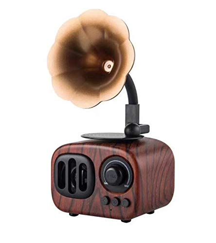 Portable Bluetooth Speaker, Retro Wireless Speaker Wood Style Stereo Speaker with HD Audio and Enhanced Bass, Built-in Rechargeable Battery, BT5.0, Handsfree Calling, TF Card Slot for Home Office