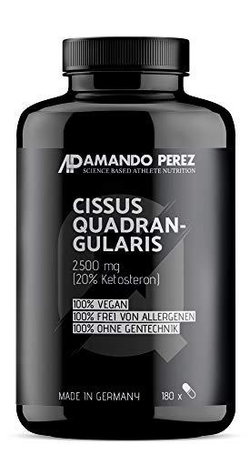 Cissus Quadrangularis Extrakt 2500 mg - 20% Ketosterone (180 vegane Kapseln)