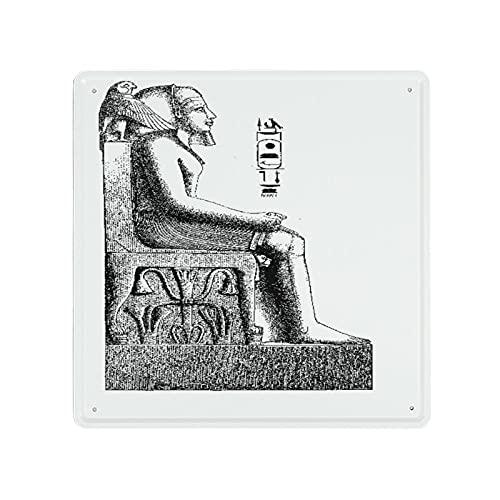DECISAIYA Carteles de Metal El rey faraón de Egipto posa un boceto de halcón de pájaro Placa de la Pared Póster Idea de Regalo para Garage,Taller,Casa o Bar,Diseño Vintage Decorativo 30x30cm