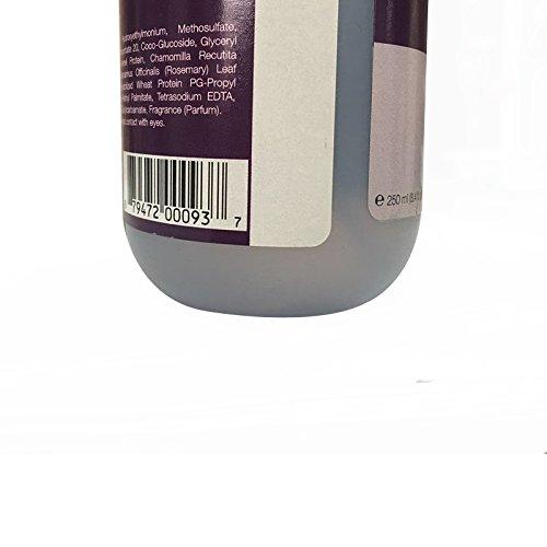 Everyday Isle of Dogs Lush Coating Dog Brush Spray, Violet + Sea Mist, 8.4 Ounce