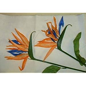 Vintage Bird of Paradise Artificial Flowers 4″ x 4″ on 16″ Stem Set of 2