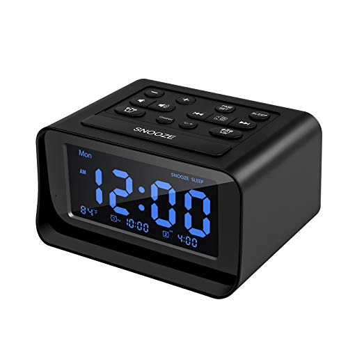 DGSCIENCY Alarm Clock Radio for Bedroom, Large LCD Digital Clock with Dual USB Charger, Brightness Dimmer, Temperature Display, Dual Alarms, Adjustable Alarm Volume, Snooze, Battery Backup